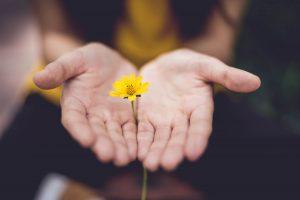 Co warto wiedzieć o psychoterapii?